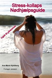 Stress-kollaps. Nødhjælpsguide. E-bog af Ane-Marie Kjeldberg